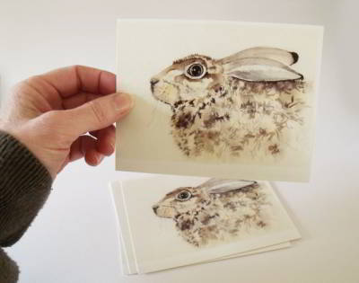 Brown Hare Postcards