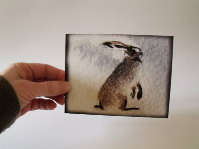 Rainy Day Hare Postcards