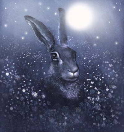 Hare Winter Moon by claire barker