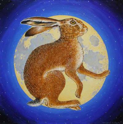 Moon Hare by Eleanor Ludgate