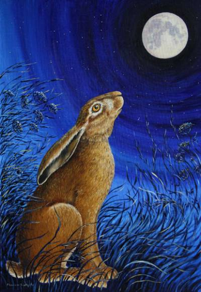 Moonwatching Hare by Eleanor Ludgate