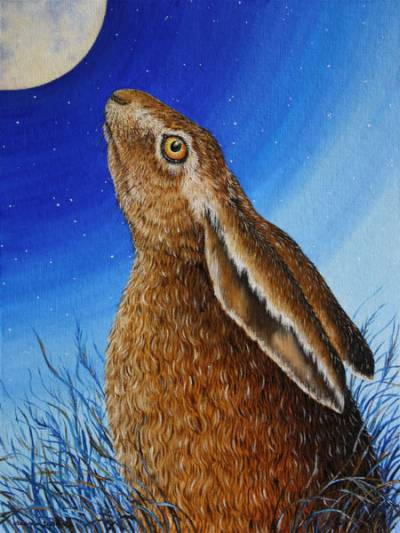 Moongazing Hare by Eleanor Ludgate