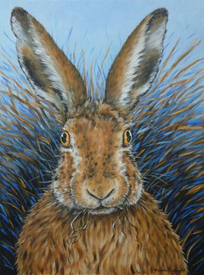 Startled Hare (Blue Background)